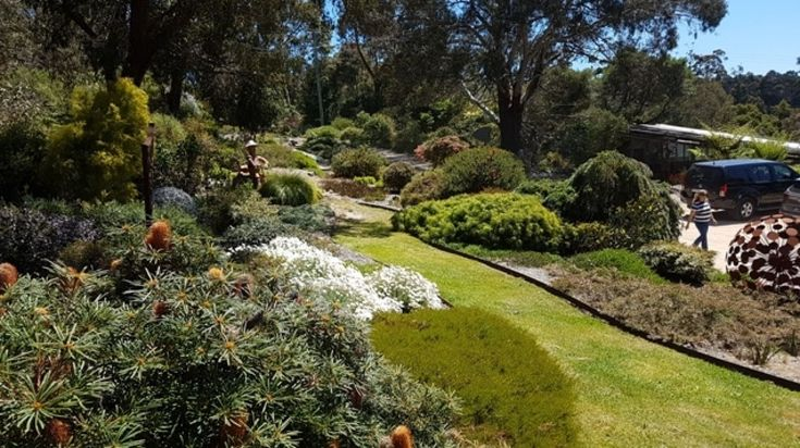 After enjoying a phase of popularity in the 1970s, native gardens largely fell out of favour.