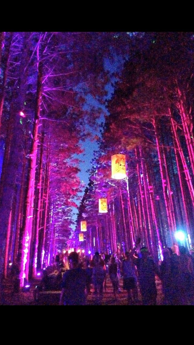 electric forest, god i would lose my mind here