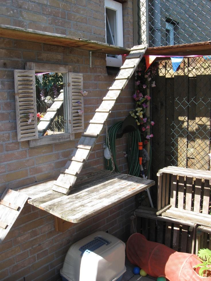 Outdoor Cat House Design Plans: Outdoor Cat House