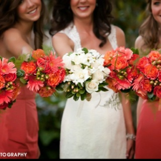 #wedding flowers coral roses, gerbers and hypericum @Carol Napora-peel www.carollynnevents.com