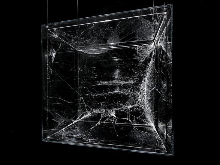 Enter the Cosmic Spiderweb Sculptures of Tomás Saraceno   The Creators Project