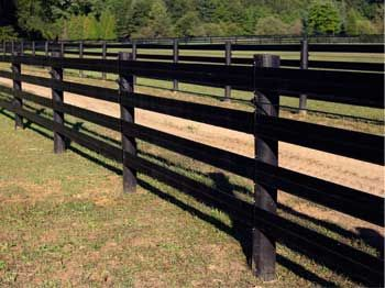 I'm very much liking the look of this black flex fencing- something to look into!