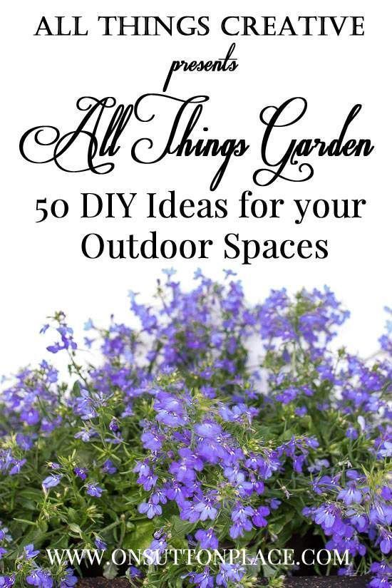 Want the best garden ever? Check out these ideas and tips for all of your outdoor spaces!