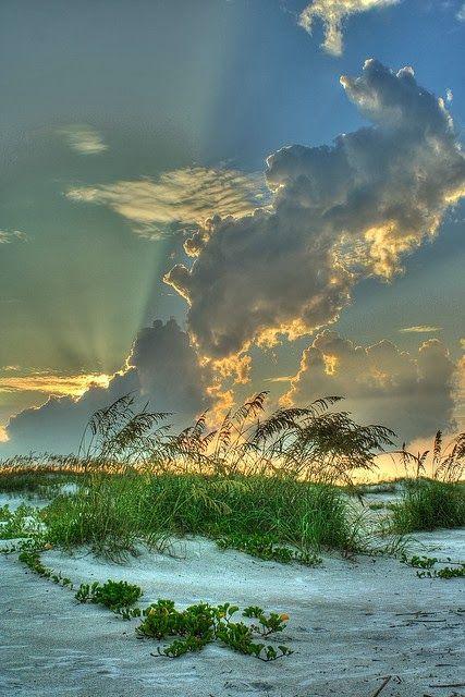 Anastasia State Park in St. Augustine, Florida