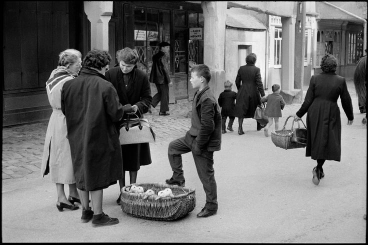 Henri Cartier-Bresson. Brittany. Ile-et-Vilaine Department. This cattle market near Rennes has been a rendez-vous for peasants for centuries. They bring their poultry in baskets