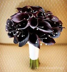 "My bouquet of ""black"" calla lilys"