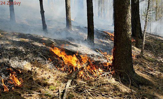 Na Brněnsku hoří špatně přístupný les, hasiči čekají na letadla s vodou