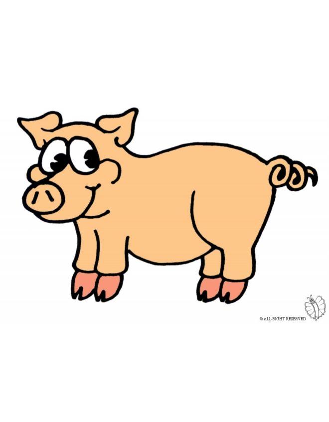 18 best disegni colorati di animali images on pinterest for Maialino disegno per bambini