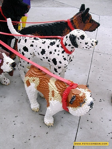 Lego Canine friends.  A challenge for my little Lego lovin' grandson.