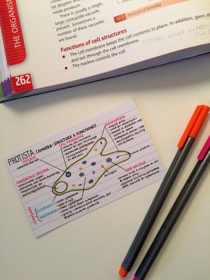 GED Exam Flashcard Study System: GED Test Practice ...