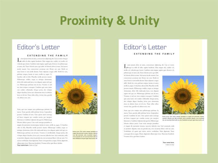 C25b734a4de07067b2fbaa265fb Graphic Design Principles Definition And Basics You Need For Good Design Principles Of Design Graphic Design Unity
