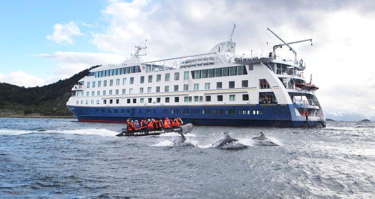 Milos y Maria viajaron desde Canadá para conocer Patagonia y se embarcaron en una expedición que jamás olvidarán. 🐧🐬⛴💕 #viajes #viaje #viajeros #vacaciones #crucero #Patagonia #pinguinos #delfines #faro #lugares
