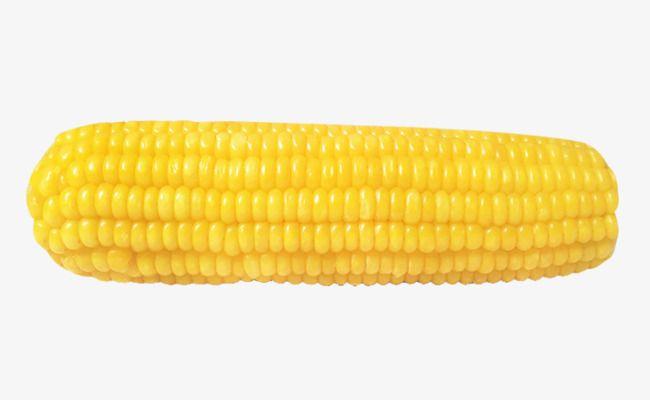 صور للخضروات ذرة بحث Google Corn Vegetables