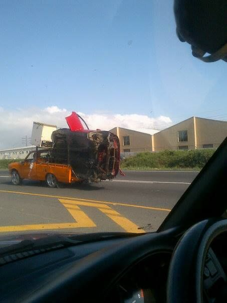 Seen on the N7 near Cape Town on 26-06-14