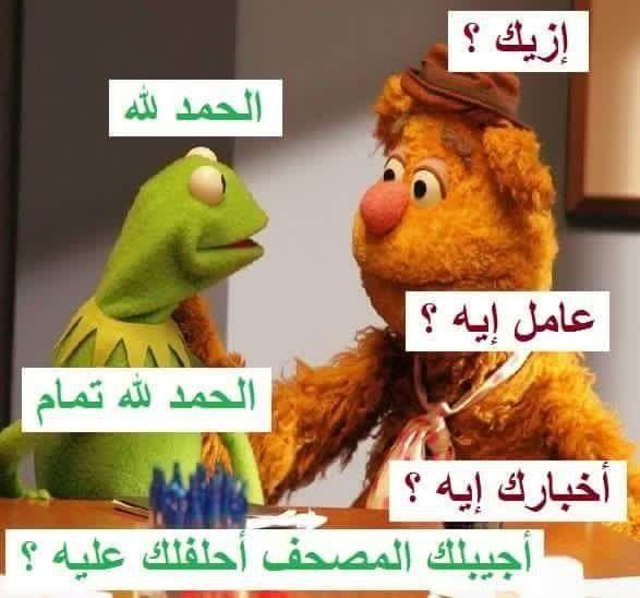 نكت نكت الضفدع شاهد اجمل نكت الضفدع كيرميت هتموتك من الضحك بالصور موقع مفيد لك Fun Quotes Funny Funny Arabic Quotes Funny Picture Jokes