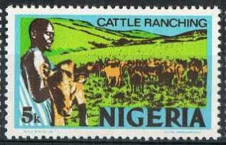 One of the preoccupations of Northern Nigeria is cattle rearing.