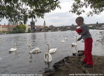 TOP 5  FREE FAMILY ACTIVITIES IN PRAGUE  #prague#child#baby#family#czech