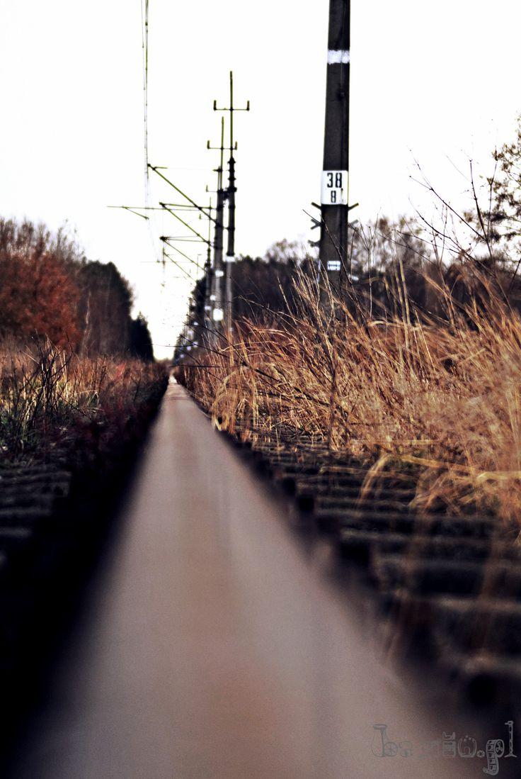 Tory kolejowe z nieco innej perspektywy