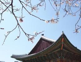 Seoul Travel Guide hotelworld.tv/guides/seoul.html #seoul