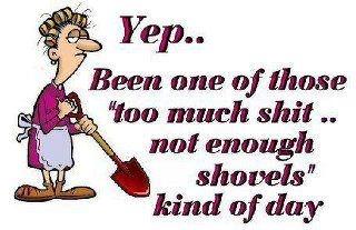 shovel kind of day
