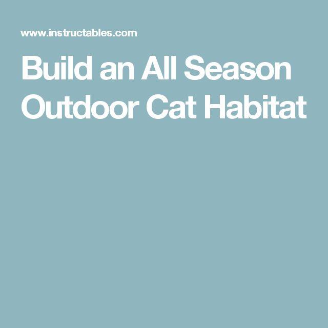 Build an All Season Outdoor Cat Habitat