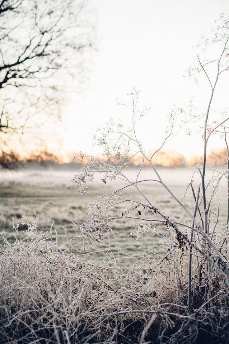 best 25 winter scenes ideas on pinterest winter beauty winter