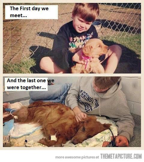 The end of a great friendship…true love...sad but sweet