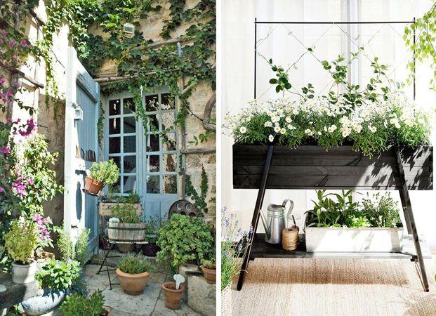 Wildernis: 5x groen op het balkon, de stoep of het dakterras - van dit mooie, liefelijke standtuintje zijn wij gecharmeerd