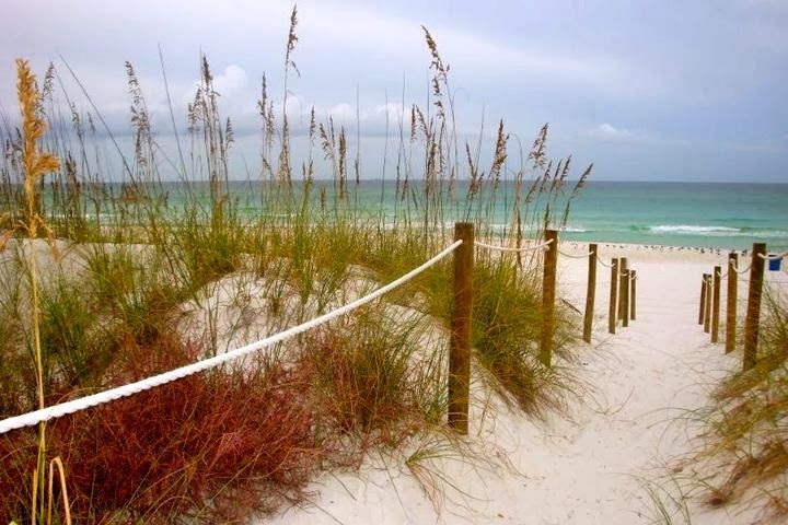 july 4th panama city beach rentals