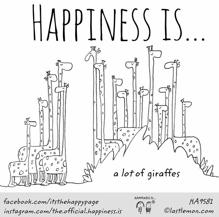 ~Happiness is a lot of Giraffes