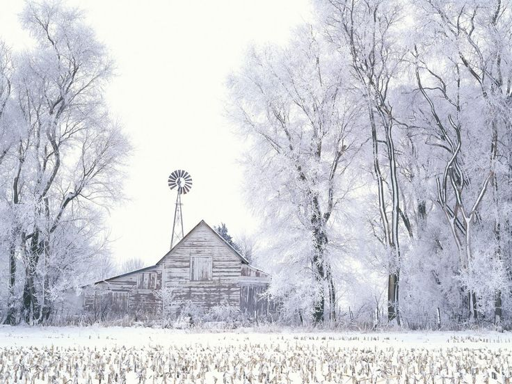 Landscapes - mobile backgrounds: http://wallpapic.com/landscapes/uncategorized/wallpaper-40136