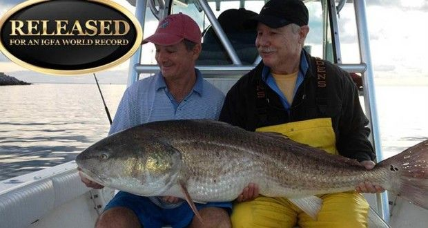 IGFA All-Tackle World Record Red Drum Caught in Virginia