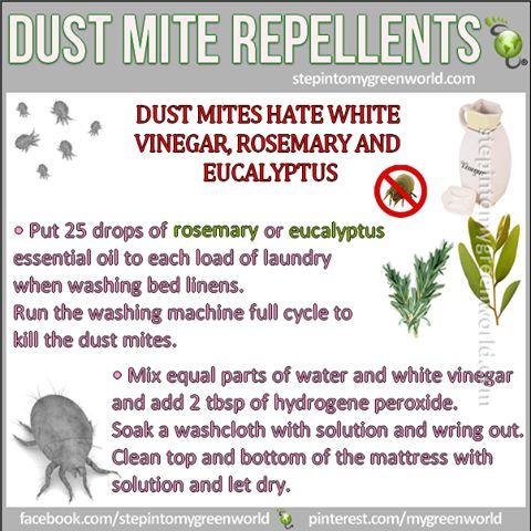 Dust Mite Repellents                                                                                                                                                     More