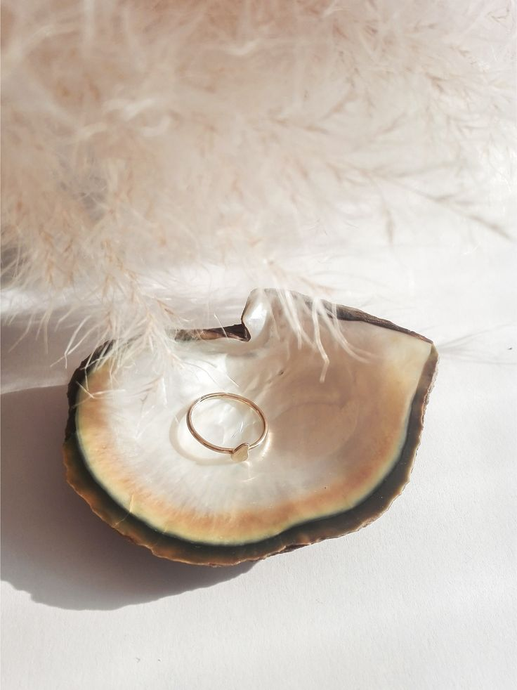 #instagram #rettfrem #ring #jewelry #seashell