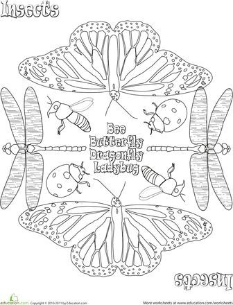 coloring pages on a variety of things including animals abc 2273