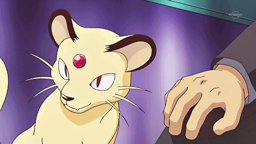 Persian | 16 Original Pokemon That Would Actually Make Fantastic Pets