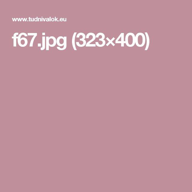 f67.jpg (323×400)