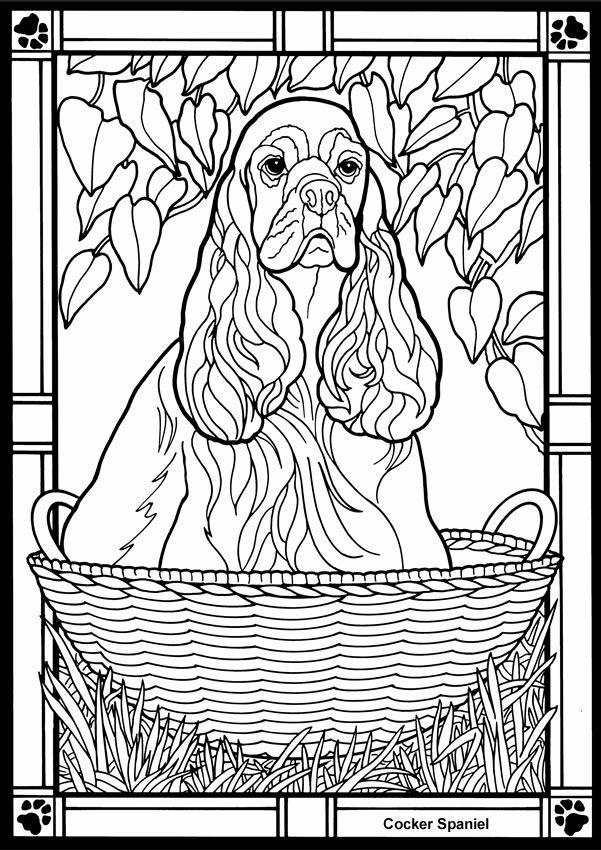 cocker spaniel coloring pages - cocker spaniel pergamano chiens patrons pinterest