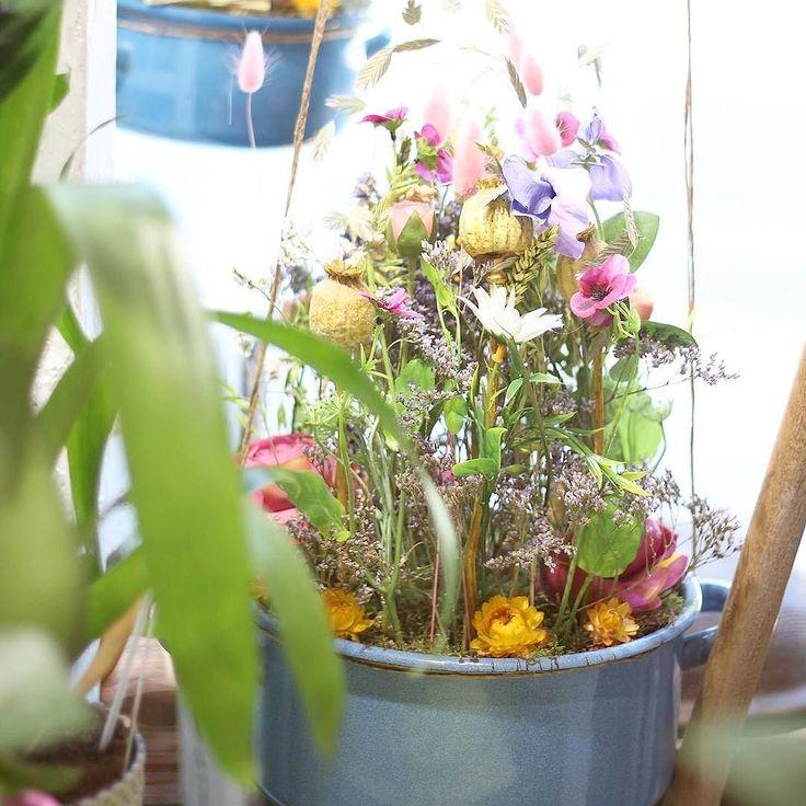 """Uvarili sme pre vás novú kolekciu """"Slovenské leto""""  #kvetysilvia #kvetinarstvo #kvety #leto #love #instagood #cute #follow #photooftheday #beautiful #tagsforlikes #happy #like4like #nature #style #nofilter #pretty #flowers #design #awesome #homedecor #home #handmade #flower #summer #shoplocal #shop #floral #naturelovers #picoftheday"""