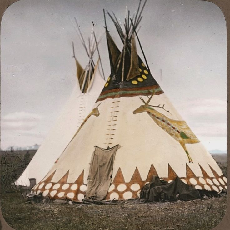 """When you hear the words, """"Indian,"""" or """"Native American,"""" you probably think of tipis. But, as a matter of fact, most Indians did not live in tipis. Tipis were used mainly by Plains Indians, such as the Lipan Apache, Comanche and Kiowa, after the Spanish introduced horses into North America about 500 years ago. Plains Indians groups moved across the Great Plains following migrating herds of buffalo that ranged from Canada to Texas."""