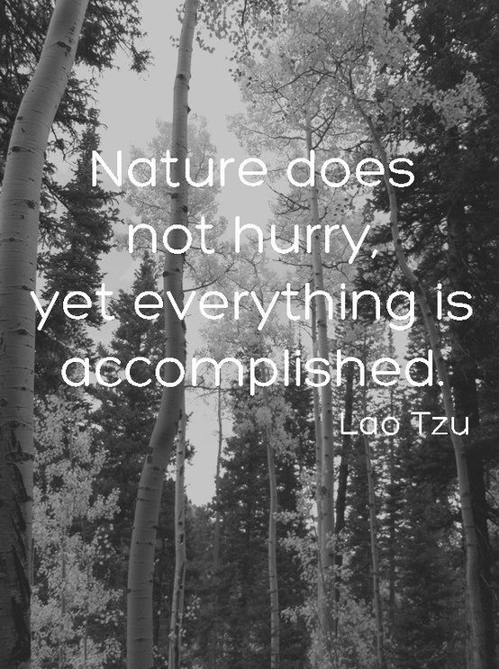 'nature does not hurry yet everything is accomplished' quote Lao Tzu