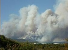 Southwest National Park: the Giblin River fire is affecting the area between Port Davey and Lake Pedder.  Closed tracks include: the Port Davey Track, Old Port Davey Track, Junction Creek Track, Arthur Plains Track, Cracroft Valley Track, Blakes Opening - Huon Track and the Old River traverse.   The Scotts Peak Road, Mt Anne Circuit and Lake Judd Track are open. The Huon and Edgar campgrounds are closed.  For more info, http://www.parks.tas.gov.au/?base=29793