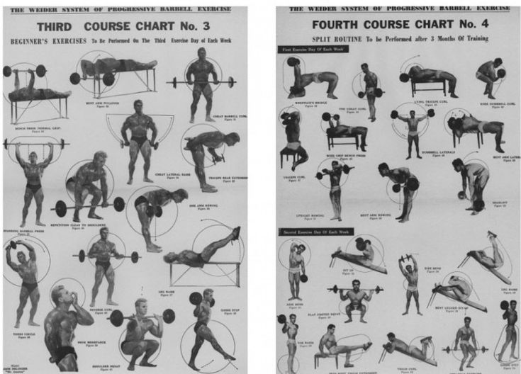 1950 weider barbell course
