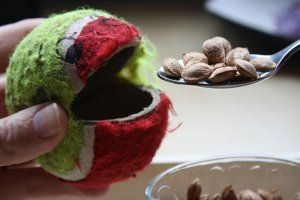 Munch Balls! Easy to make by cutting a slit in a tennis ball. Add google eyes and squeeze hard to open the mouth. Feed the Munch Ball pasta using tweezers. It's great fun!