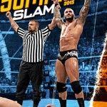 WWE SUMMERSLAM 2013 DVD Review