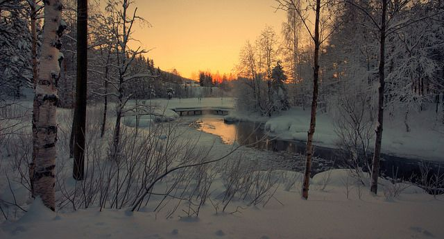 """synplynatural: """"The Frozen Lake, Levi, Finland by Andy Watson1 on Flickr. """""""