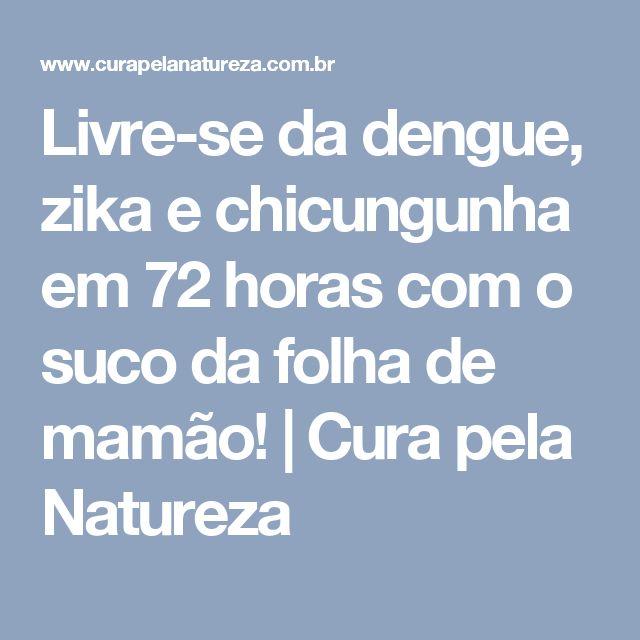 Livre-se da dengue, zika e chicungunha em 72 horas com o suco da folha de mamão!   Cura pela Natureza