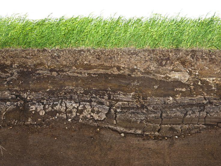 27 best images about soil horizons on pinterest artist 39 s for Garden soil layers