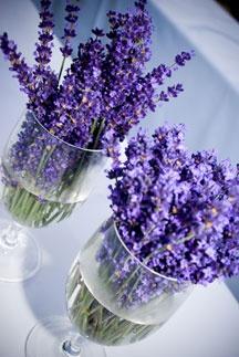 Table flowers Lavender in wine glasses www.flowersatkirribilli.com.au
