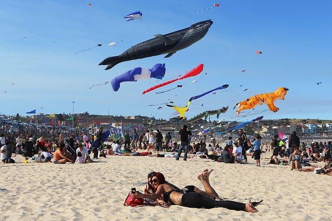 Bondi festival of the winds 2012